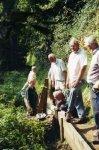 Milton Woods, Godalming - September 2004