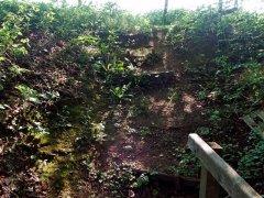 Dunsfold steps before repair, May 2008