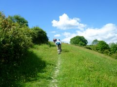 Climbing up Chalton Down